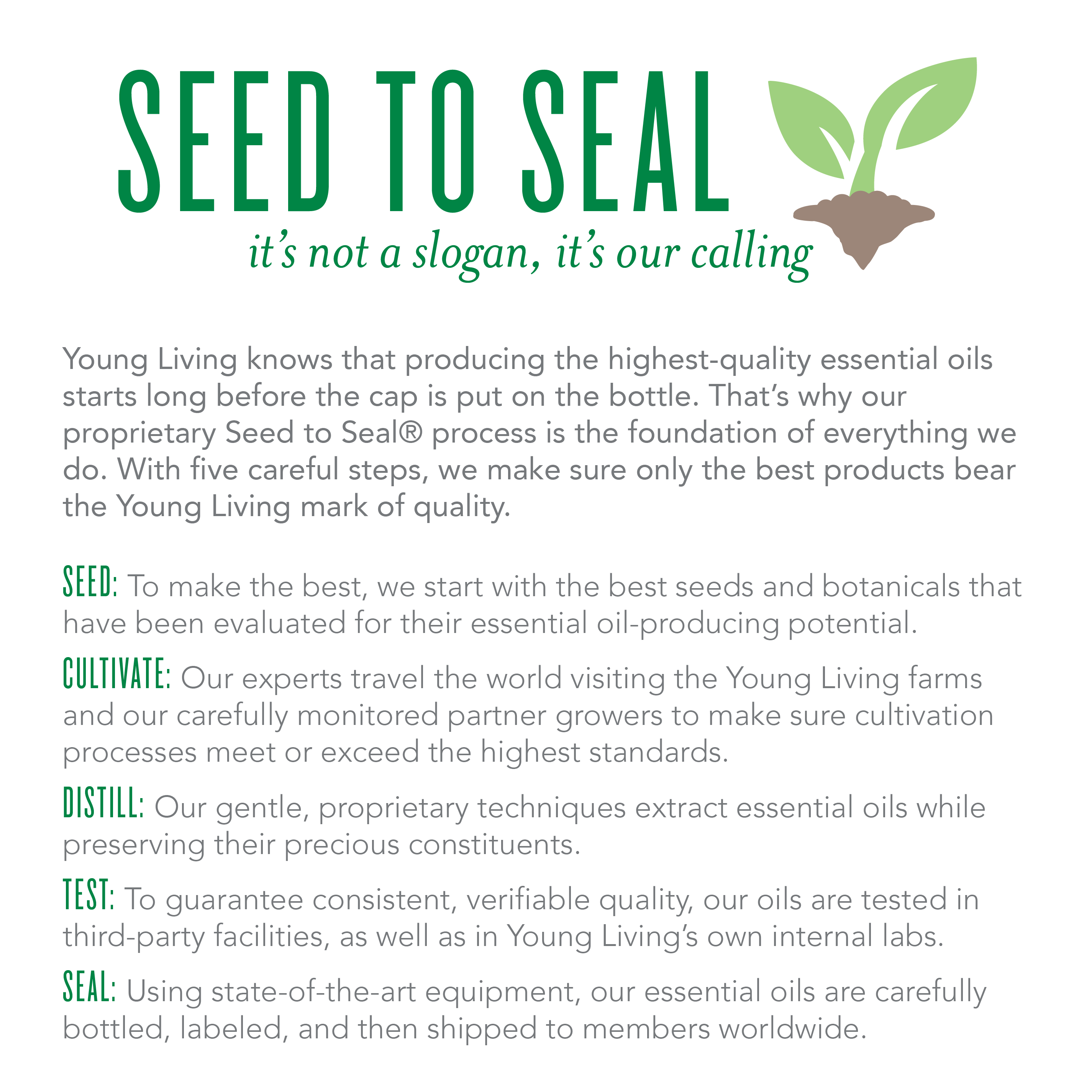 Young Living Seed to Seal Infographic