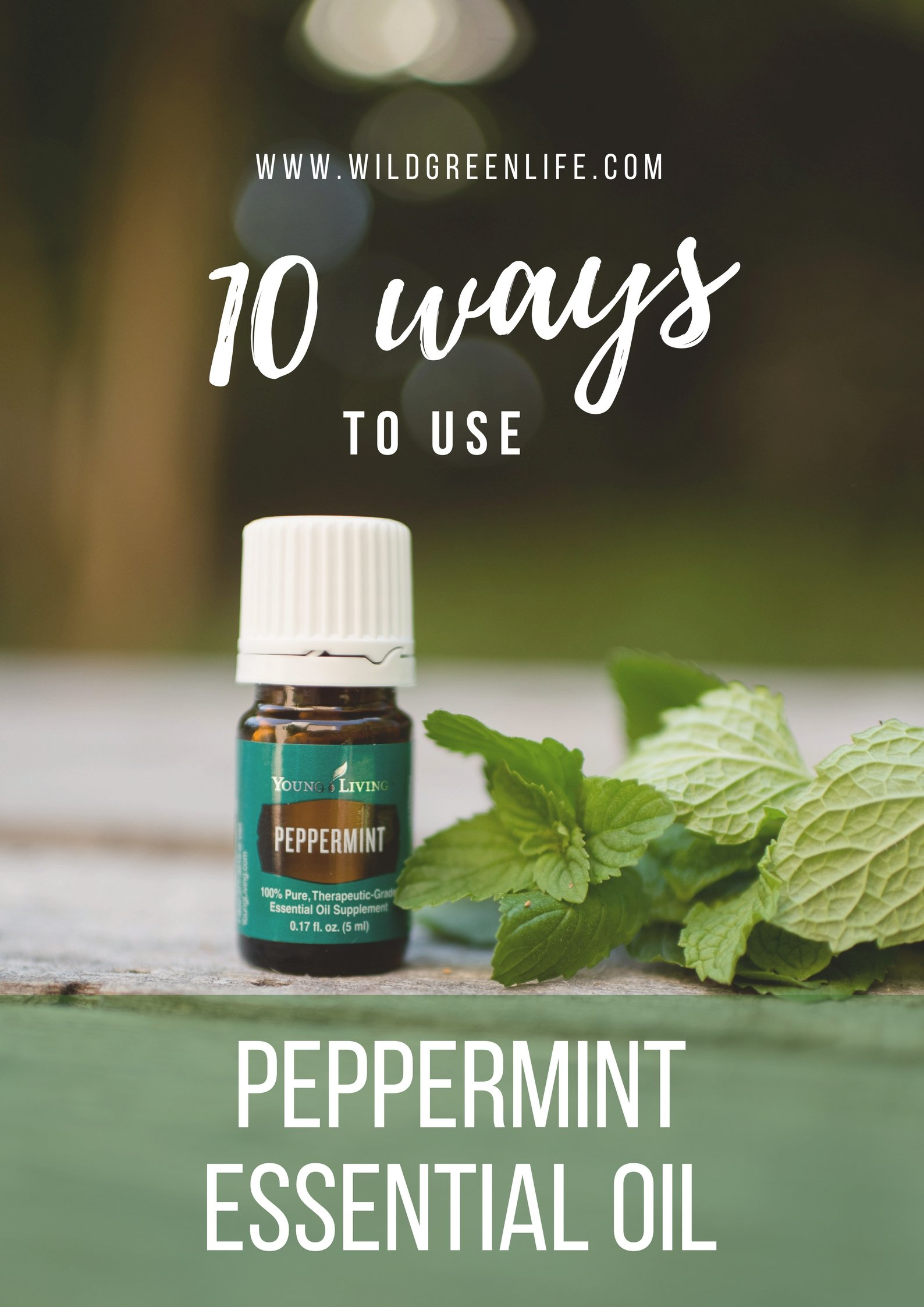 10 ways to use peppermint essential oil... trust me, once you learn these tricks, you won't remember what you used to do without it! Click through to read more, or pin to save for later!