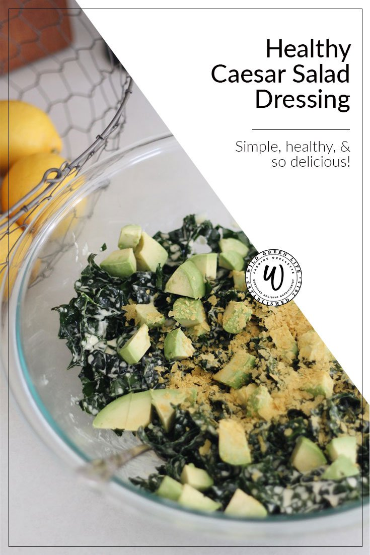 So you think you don't like kale??? I'm willing to bet that you just haven't had it with the right dressing! Kale can be so delicious if you prepare it right - and the key to making a good salad is always the dressing.Click through for this easy, healthy, and delicious homemade caesar salad dressing, or pin to save for later!